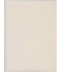 SARATOGA Z10 ANTIMUFFA 250ML